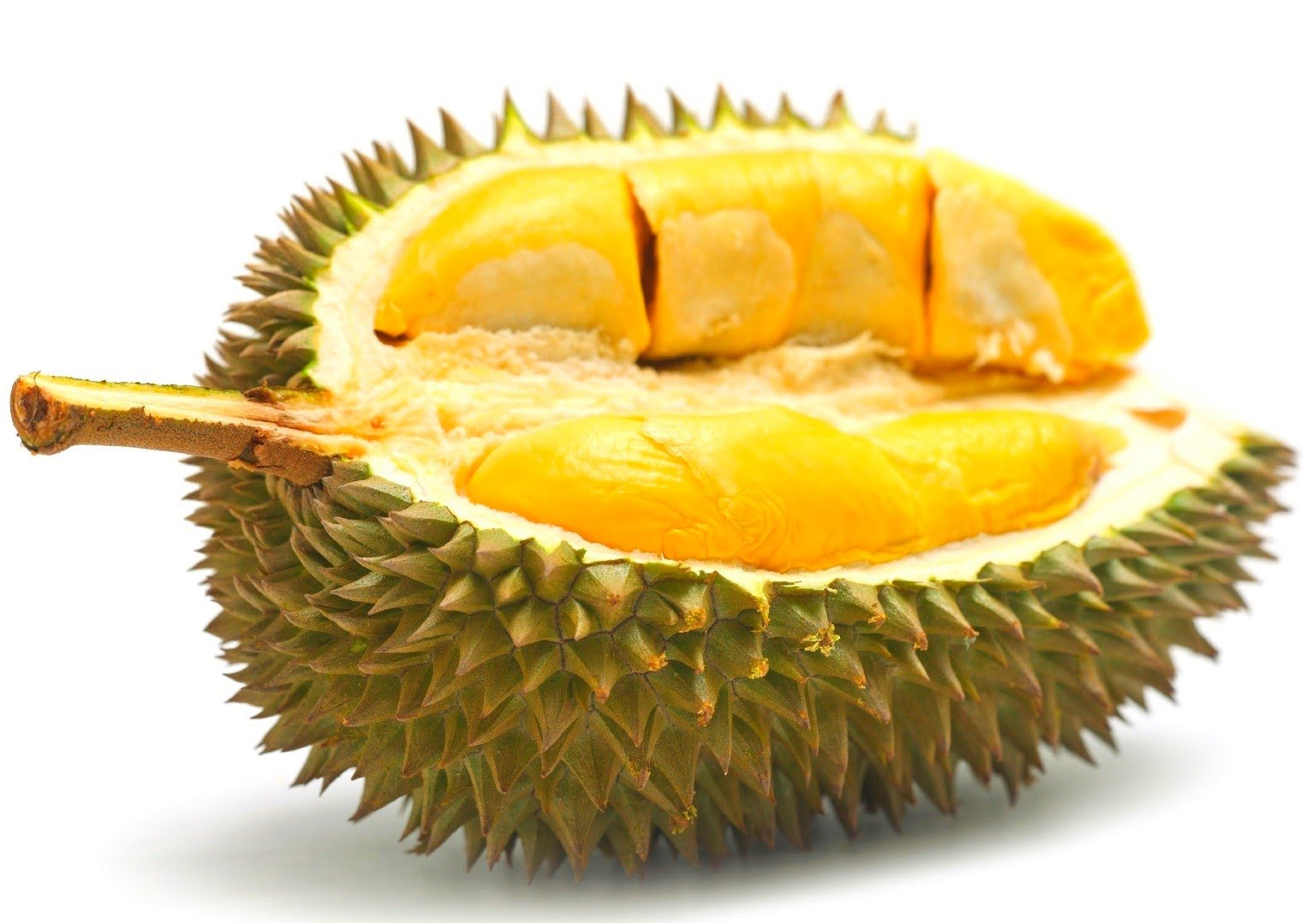 durian5